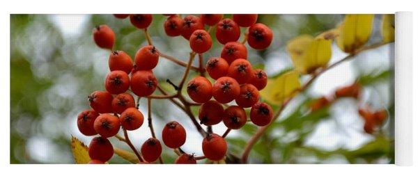Orange Autumn Berries Yoga Mat
