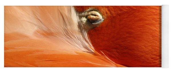 Flamingo Orange Eye Yoga Mat