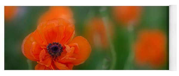 Orange Poppy Yoga Mat