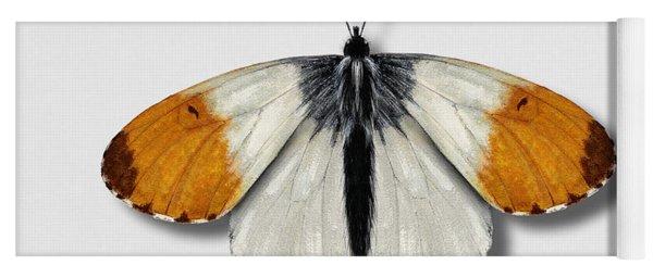 Orange Tip Butterfly - Anthocharis Cardamines Naturalistic Painting - Nettersheim Eifel Yoga Mat