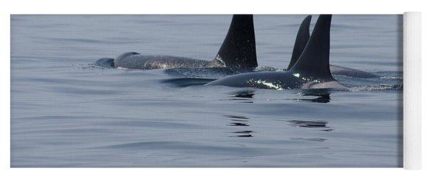 Orca Family Yoga Mat