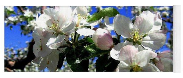 Orchard Ovation Yoga Mat