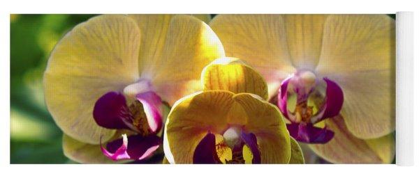 Orchid Study Viii Yoga Mat