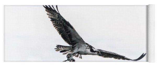 Osprey In Flight Yoga Mat