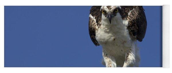 Osprey Photo Yoga Mat