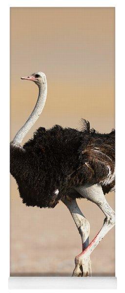 Ostrich Yoga Mat