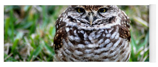Owl. Best Photo Yoga Mat