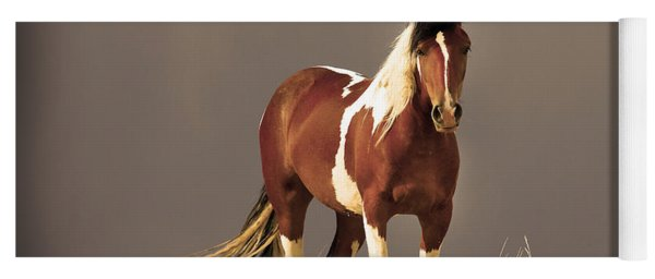 Paint Filly Wild Mustang Sepia Sky Yoga Mat