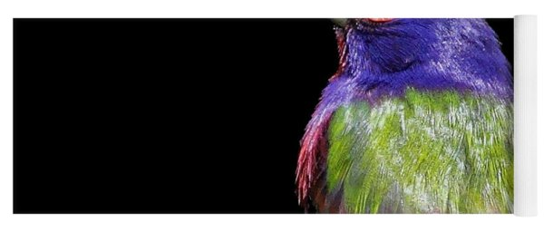 Painted Bunting Yoga Mat