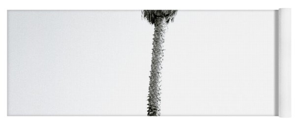 Palm Tree And Graffiti Yoga Mat