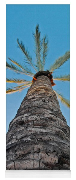 Palm Tree Looking Up Yoga Mat