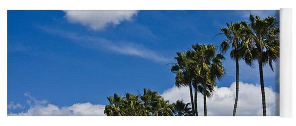 Palm Trees In San Diego California No. 1661 Yoga Mat