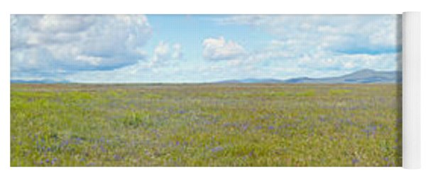 Panoramic View Of Spring Grasslands Yoga Mat