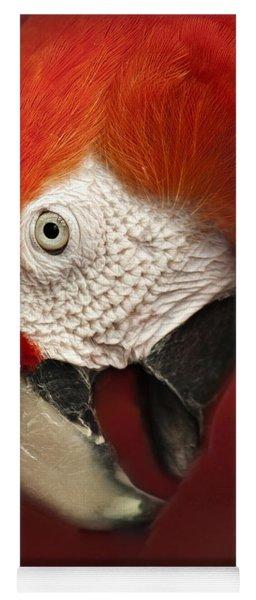 Parrot Portrait Yoga Mat
