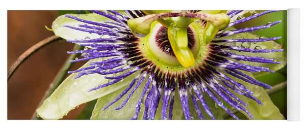 Passion Flower Yoga Mat