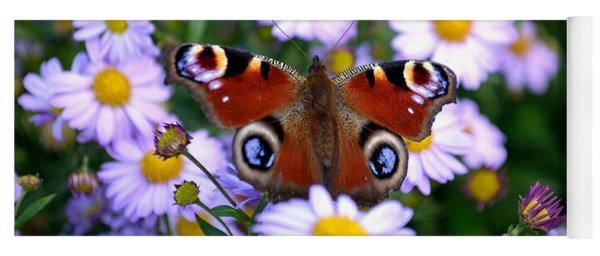 Peacock Butterfly Perched On The Daisies Yoga Mat