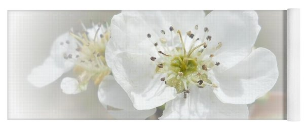 Yoga Mat featuring the photograph Pear Blossom by Judy Hall-Folde