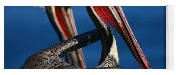 La Jolla Pelicans In Waves Yoga Mat