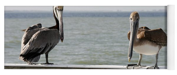 Pelicans On The Pier At Fort Myers Beach In Florida Yoga Mat