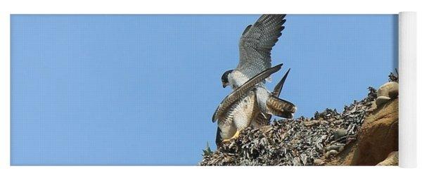 Peregrine Falcons - 5 Yoga Mat