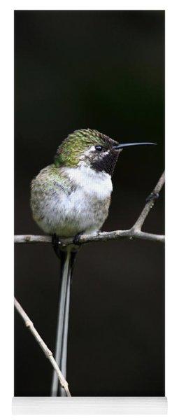 Peruvian Sheartail Hummingbird Yoga Mat