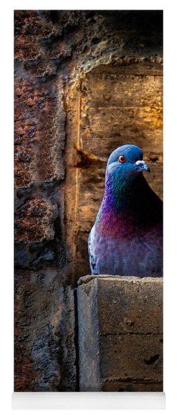 Pigeon Of The City Yoga Mat