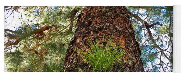 Pine Tree Tower Yoga Mat