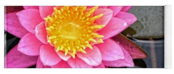 Pink Lotus Flower - Zen Art By Sharon Cummings Yoga Mat