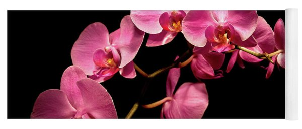 Pink Orchids 3 Yoga Mat
