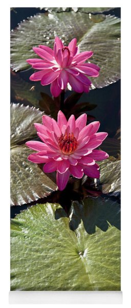 Pink Water Lily IIi Yoga Mat