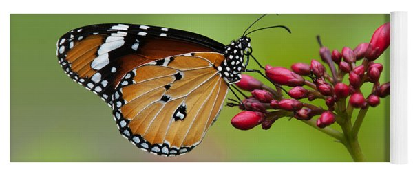 Plain Tiger Or African Monarch Butterfly Dthn0008 Yoga Mat