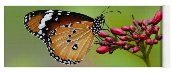 Plain Tiger Or African Monarch Butterfly Dthn0008 Yoga Mat