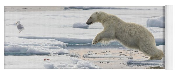 Yoga Mat featuring the photograph Polar Bear Jumping  by Peer von Wahl