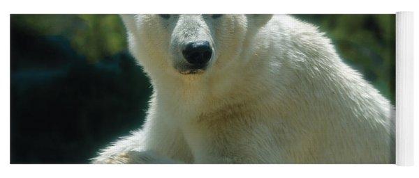 Polar Bear Portrait Yoga Mat