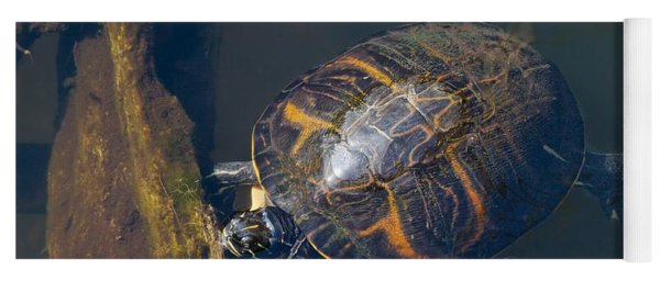 Pond Slider Turtle Yoga Mat