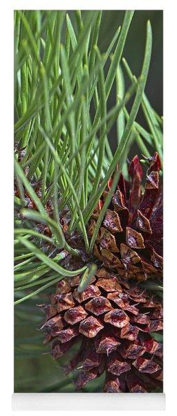 Ponderosa Pine Cones Yoga Mat
