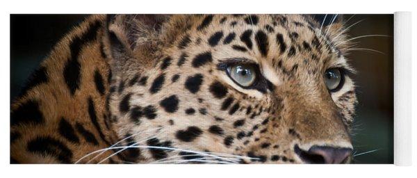 Portrait Of A Leopard Yoga Mat