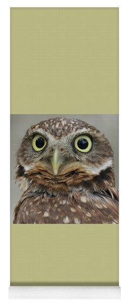 Portrait Of Burrowing Owl Yoga Mat