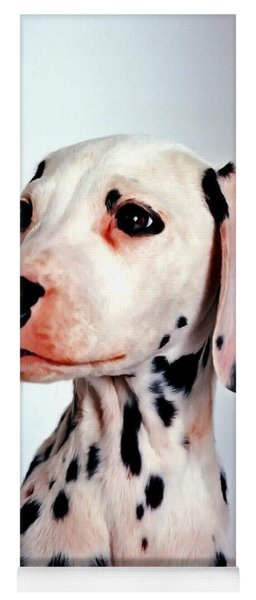Portrait Of Dalmatian Dog Yoga Mat