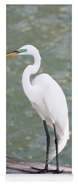 Pretty Great Egret Yoga Mat