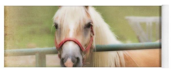 Pretty Palomino Horse Photography Yoga Mat