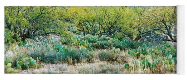 Prickly Pear Cacti Surrounds Mesquite Yoga Mat