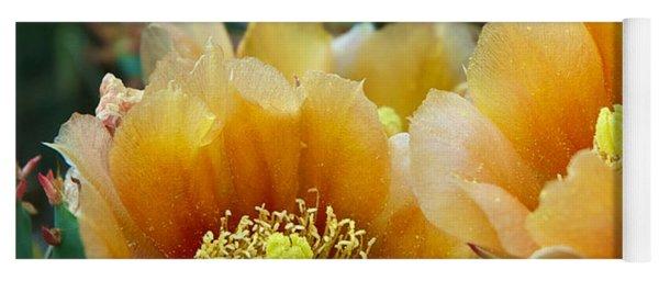 Prickly Pear Cactus Yoga Mat