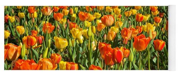 Profusion Of Tulips Biltmore Estate Nc Yoga Mat