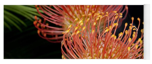 Protea Flowers At Pike Place Market Yoga Mat