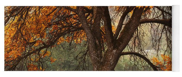 Provo Autumn #1 Yoga Mat