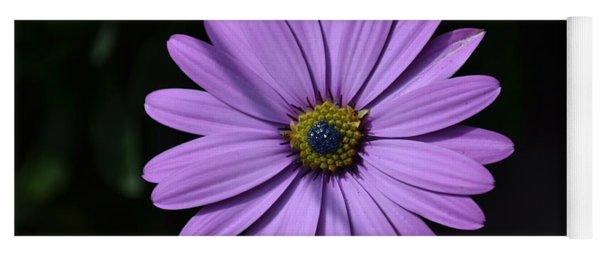 Purple African Daisy Yoga Mat
