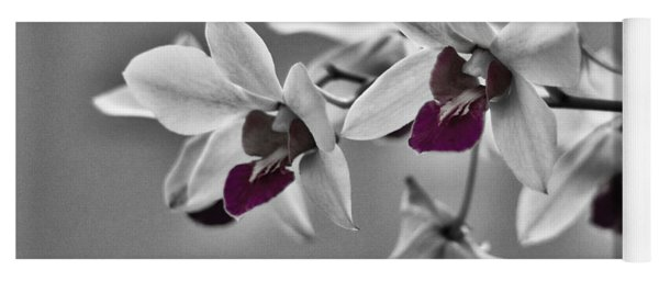 Purple And Pale Green Orchids - Black And White Yoga Mat