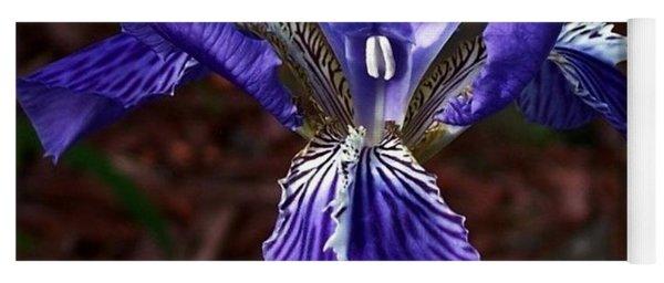 Purple Beauty Yoga Mat