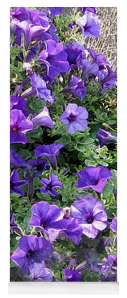 Purple Wave Petunias In Rusty Horse Drawn Spreader Yoga Mat